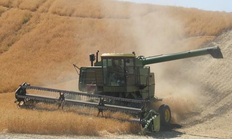 Field Harvest Website